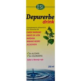 DEPURERBE LIQUIDO 250 ML ESI
