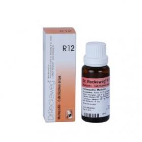R12 Multojodin Dr. Reckeweg Gotas | Farmacia Tuset