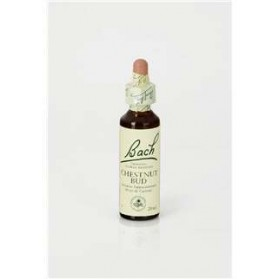 CHESTNUT BUD 20 ML FLORES BACH