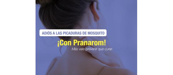 El antimosquitos más efectivo y natural para este verano